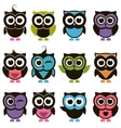 Funny colorful Owl set vector image vector image