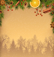 Pine Branches and Spices with Forest on Brown vector image vector image