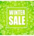 winter sale inscription on background vector image