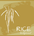 background with rice logo hand-drawn plant vector image vector image