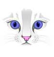 Close up of cat face vector image