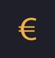 Euro computer symbol vector image vector image