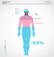 Human infographics vector image