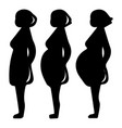 pregnancy stage icon simple black style vector image