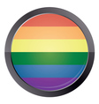 Round button with rainbow flag vector image vector image