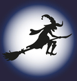 Halloween witch and moon silhouette Isolated vector image