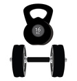 Dumbell set vector image vector image