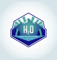 h2o natural water logo template vector image vector image