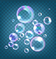 realistic soap bubbles with vector image vector image