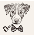 Sketch Jack Russell Terrier Dog with bow tie and vector image vector image