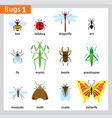 first bug series vector image