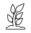 plant in soil icon image vector image vector image