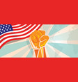 usa united states of america fight and protest vector image vector image