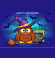 cartoon owl and pot with magic potion set vector image