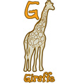 G Is For Giraffe vector image vector image