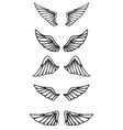 set wings on white background design elements vector image vector image