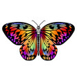butterfly drawing in vivid colors in black outline vector image vector image