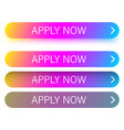 colorful apply now web buttons isolated on white vector image vector image