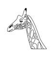 giraffe head herbivore african wildlife vector image vector image