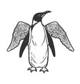 penguin bird with false wings sketch vector image vector image