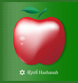 rosh hashanah card red apple isolated on g vector image