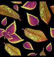 tropial plants pattern vector image vector image
