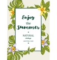 Tropical Summer Exotic Menu Fruits Card vector image vector image