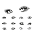 woman eyes set vector image vector image