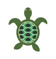 turtle cartoon with decorated tortoiseshell vector image
