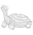 adult coloring bookpage a cute turtle vector image vector image