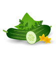 fresh cucumber vegetable with leaves flowers and vector image