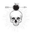 human skull and apple pierced with arrow line art vector image vector image