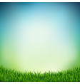 landscape with green grass vector image vector image