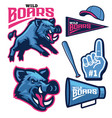 set bundle sport wild boar mascot vector image vector image