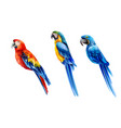 Set colorful watercolor parrots in different