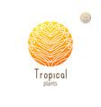 tropical jungle vector image