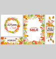 autumn sale banners colorful fall leaves vector image