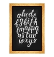 Chalk hand drawn latin calligraphy brush script of vector image vector image