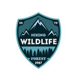 hiking expedition vintage isolated badge vector image vector image