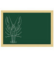 lobster sketch chalk on green blackboard vector image