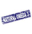 scratched natural omega 3 framed rounded rectangle vector image vector image