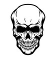 skull isolated on white background design element vector image