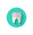 tooth with braces icon isolated in flat design vector image