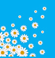 spring background with blooming chamomile vector image