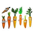 Cartoon isolated orange carrot vegetables vector image vector image