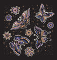 collection of butterfly and flower tattoo in old vector image vector image