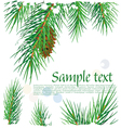 framework with pine branches vector image