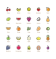 Fruit icons set Colorful design vector image