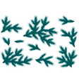 realistic blue spruce branches set for decoration vector image vector image