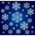 Texture of blue snowflakes on a blue background vector image vector image